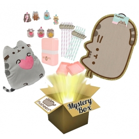 Pusheen Mystery Surprise Box no 2