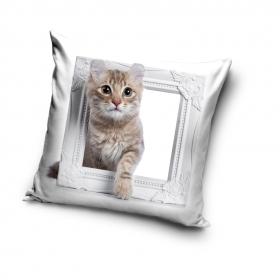 Kitty pillowcase