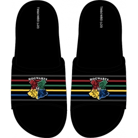 Harry Potter flip flops