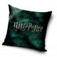 Harry Potter pillow cover
