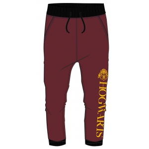 Harry Potter boys joggings pants