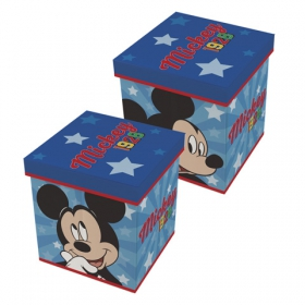 Mickey Mouse storage container